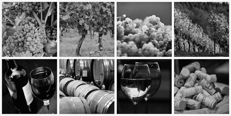 vins-bordelais-a-l-honneur-bordeaux-business