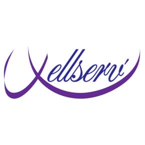 logo-agence-wellserv-entreprises-bordeaux-business