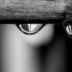gestion de l'eau salon bordeaux