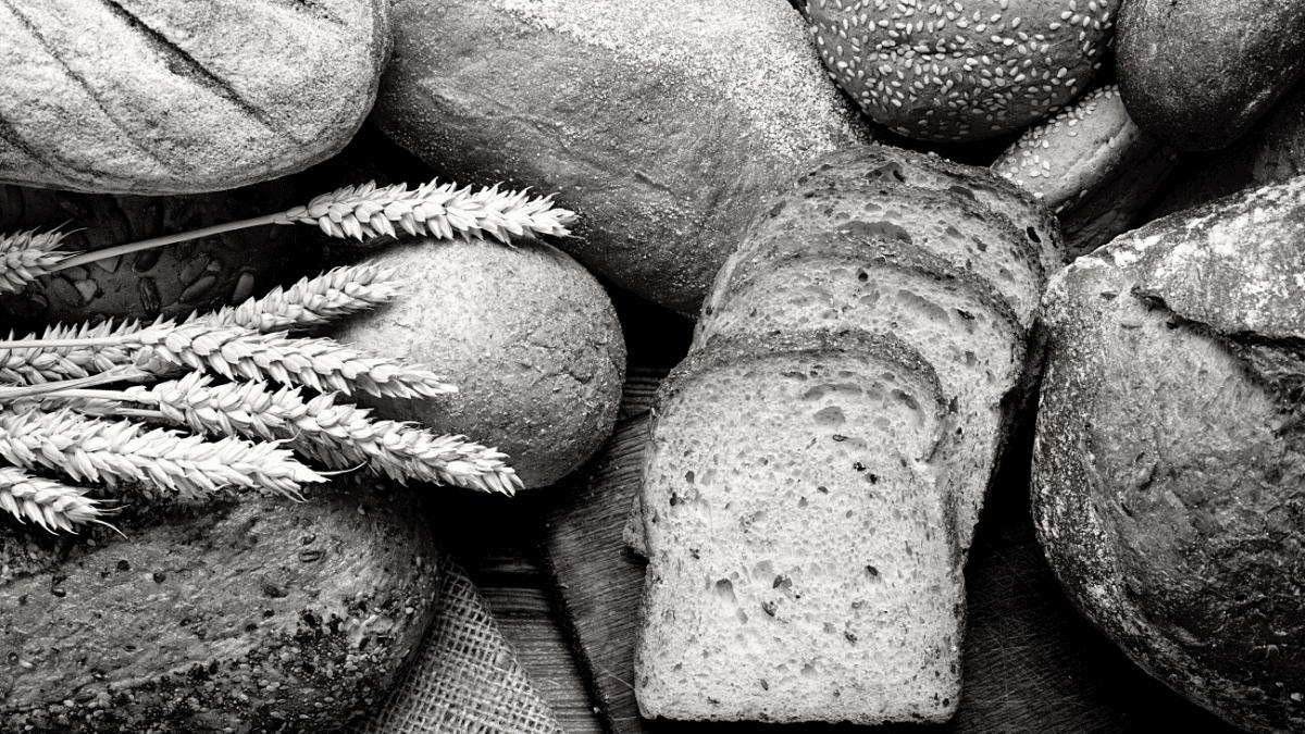 Assortiment de pains aux grains et blé