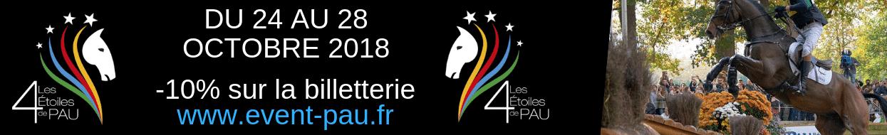 Bannière du 4 étoiles de pau Bordeaux Business