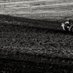 champs et tracteur d'agriculteur