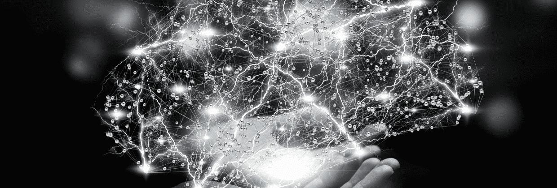 cerveau digital bordeaux business