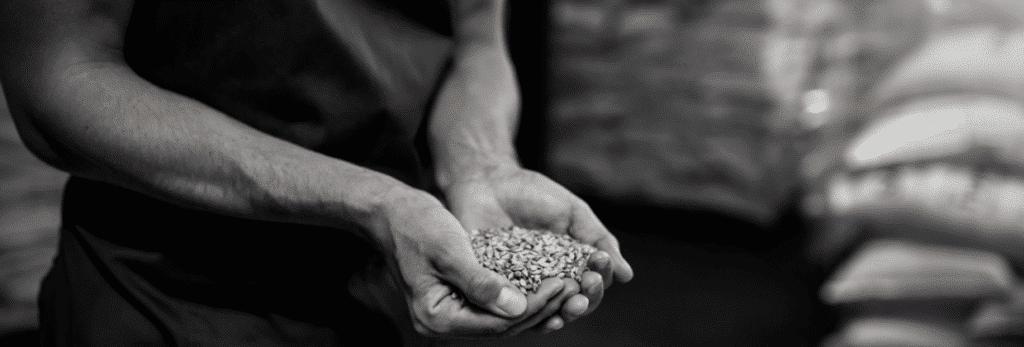 malt houblon orge bordeaux business
