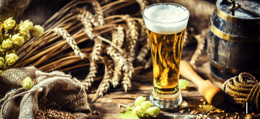 blé terroir bières Bordeaux Business