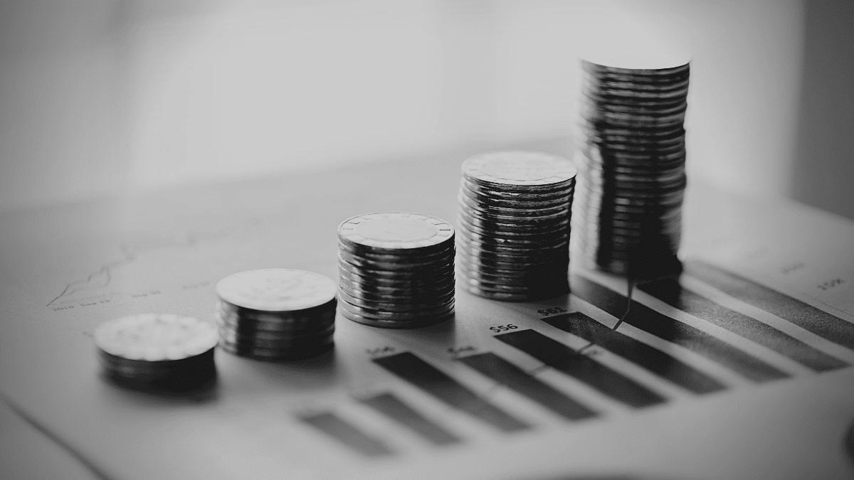 gestion finance entreprise acteur developpement