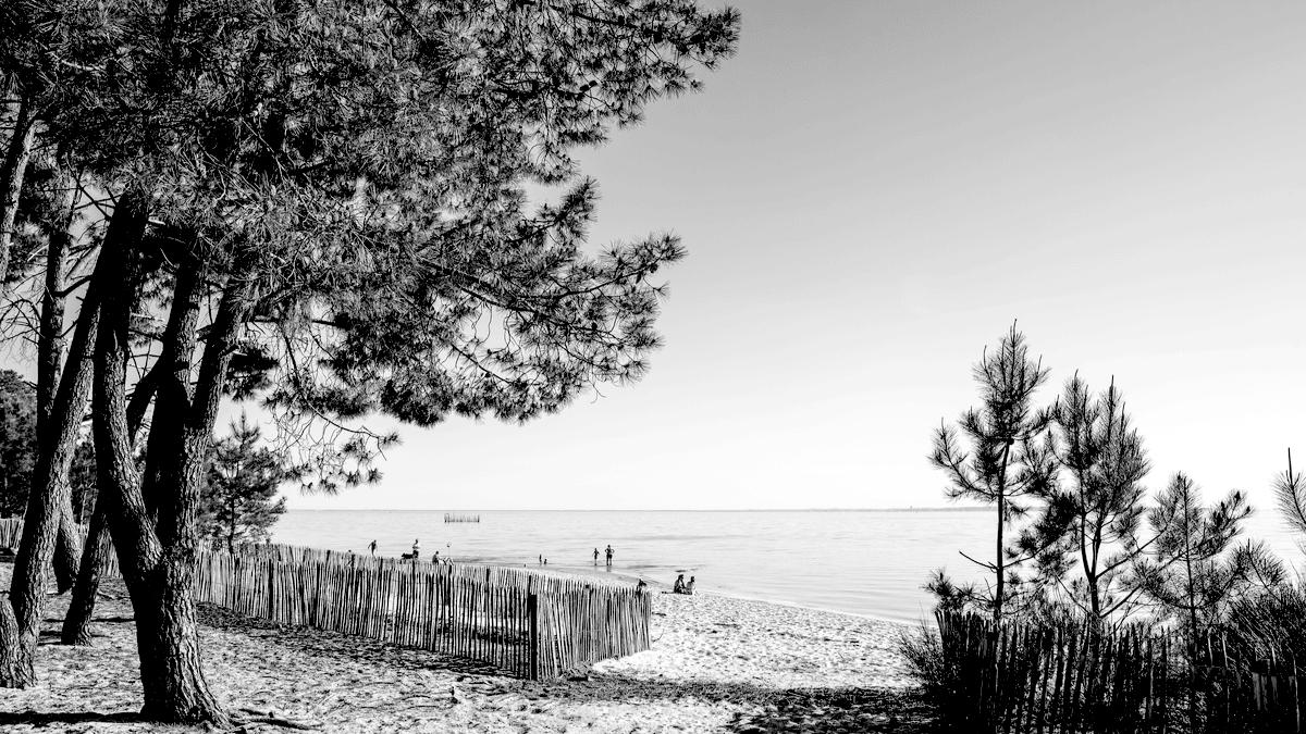 La baie d'Arcachon est l'un des joyaux de la côté Atlantique