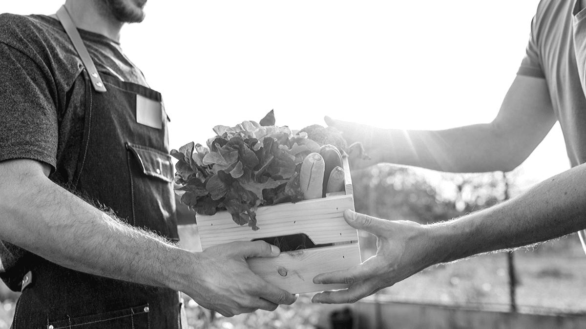 Panier de légumes frais et fruits de saison livré à domicile par un producteur local