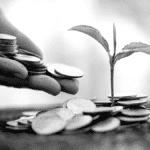 Pièces de monnaie pied plant terre