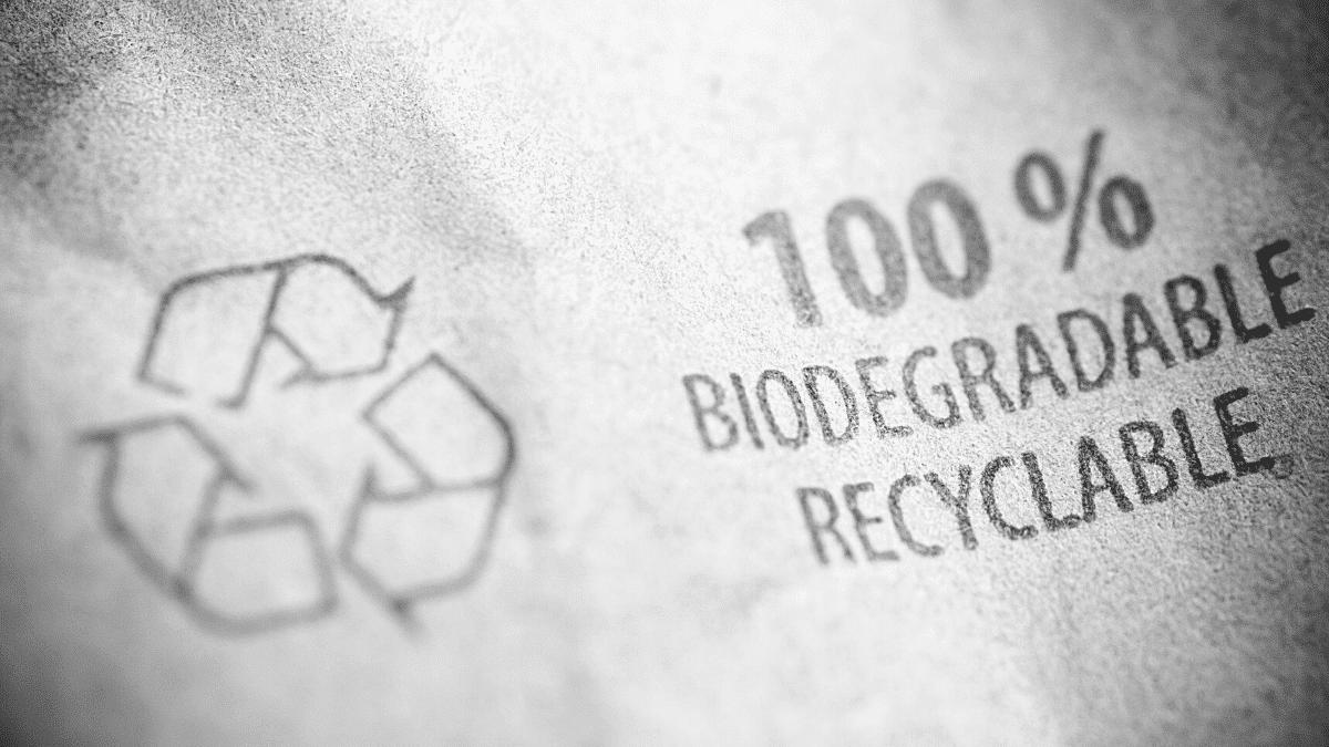 biodégradable papier naturel