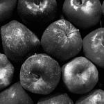 Label PME+ pommes fruits