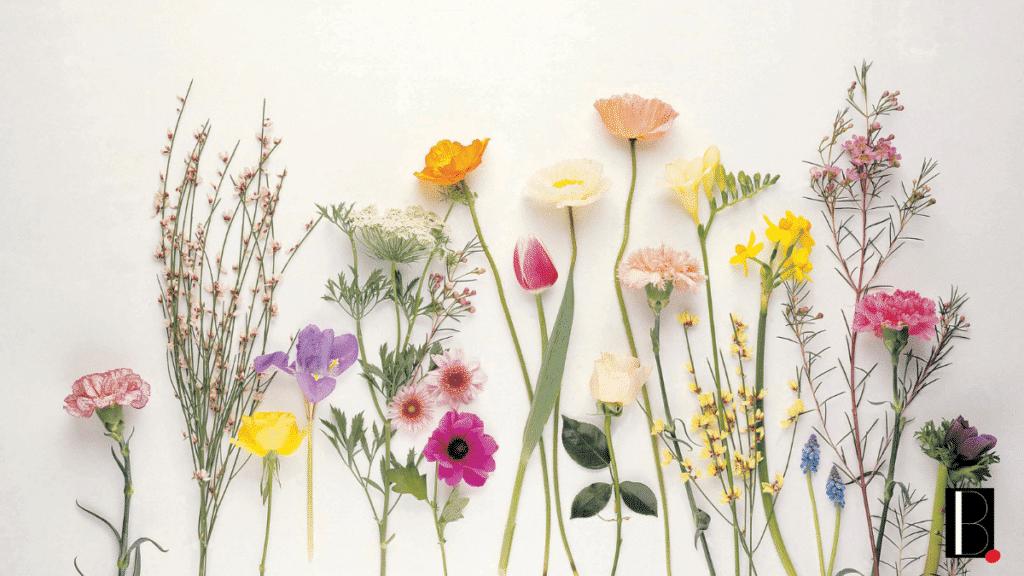 watercolor diy flowers