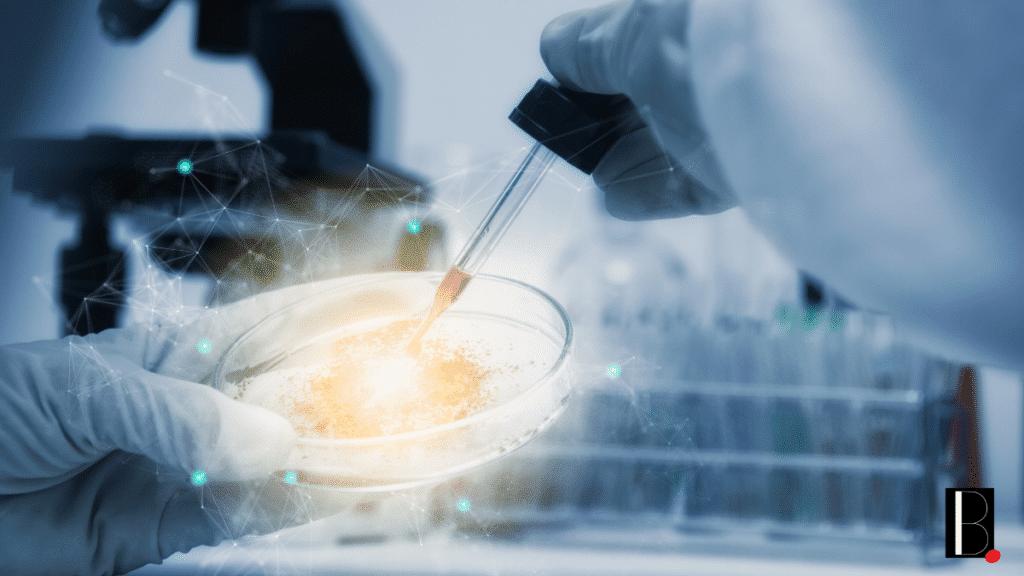 Recherche traitement cellules souches