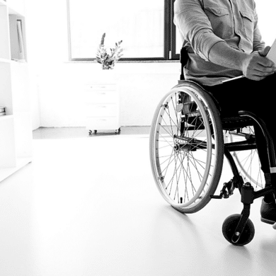 disability society inclusive law