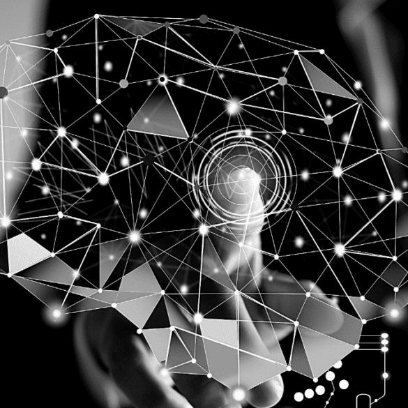 Leaders Mindset brain entrepreneur