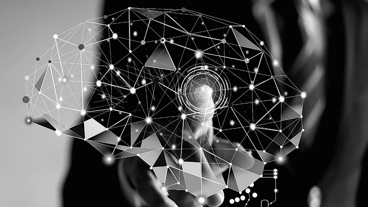 Leaders Mindset entrepreneur cerveau