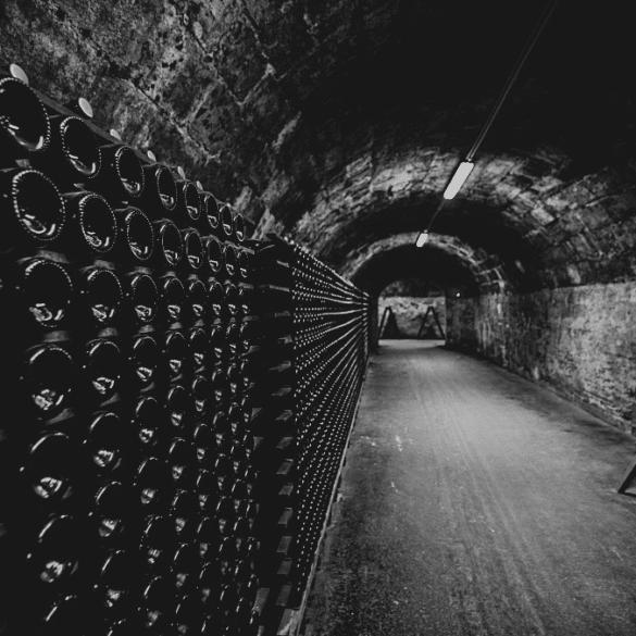 Conservation vin cave stockage fraicheur