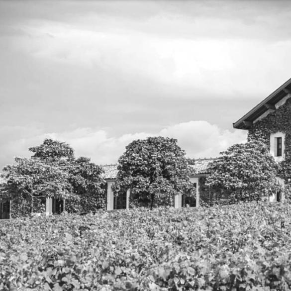 malartic family vineyard recipes