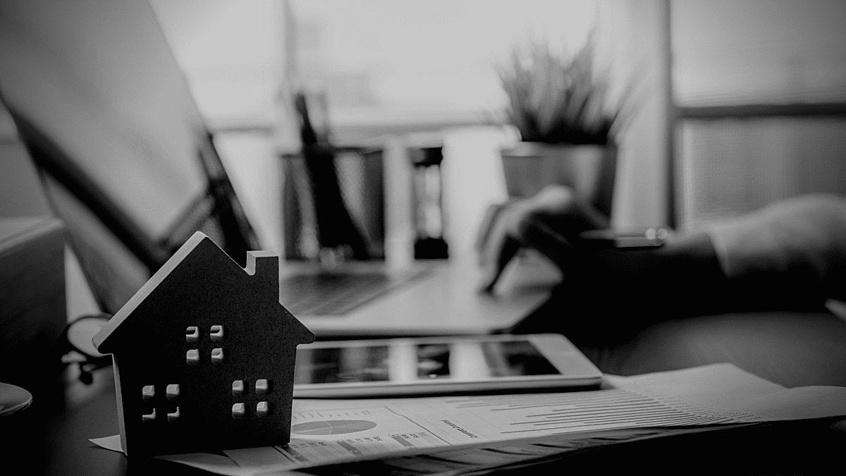 synapse real estate agency innovative