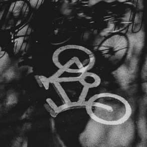 Dilecta vélos français production