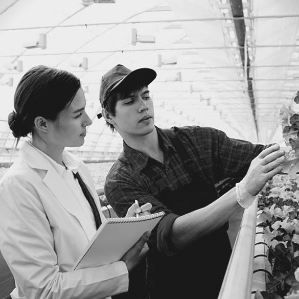 EGAlim culture travail agriculteur