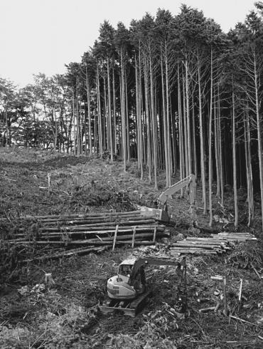 secteur forestier Fibois protection région