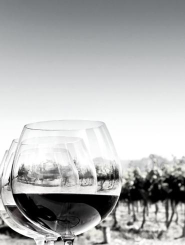 Wines glass bottle wine