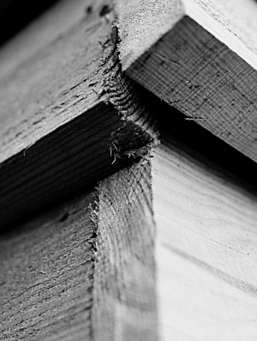 Woodrise construction bois