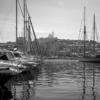 IADYS pollution eaux mer