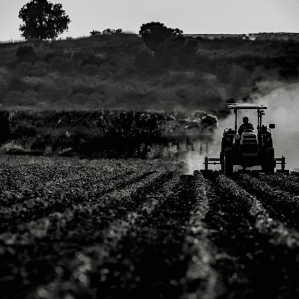 secteur agricole Agriconomie pourvoir achat agriculteurs