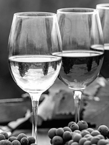 D-Vine verres vin France